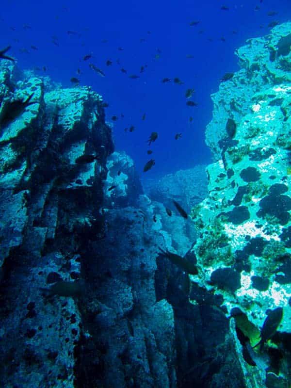 Scuba Diving Amorgos (4)