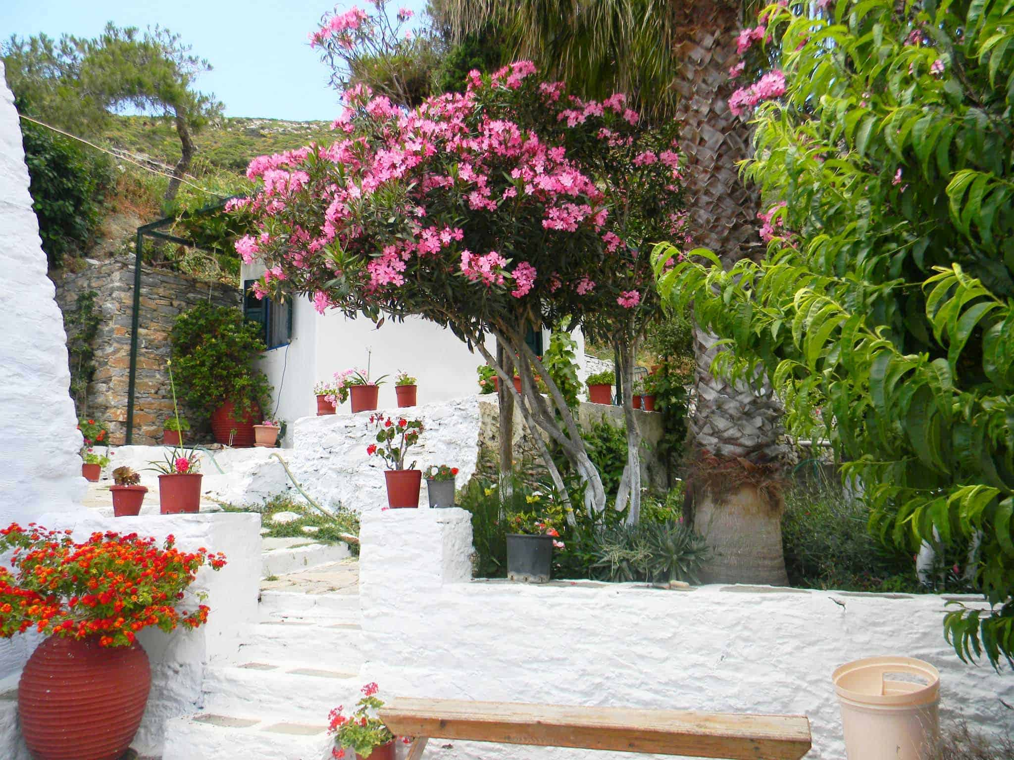 agios georgios valsamitis monastery garden amorgos